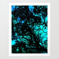 Shining Through Art Print
