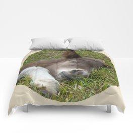 Sleep well Comforters