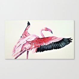 Fly Flamingo Canvas Print