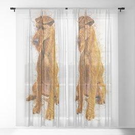 Irish Terrier Sheer Curtain