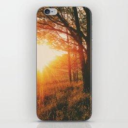 Sunset Road • Appalachian Trail iPhone Skin