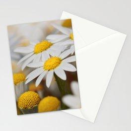Oopsie Daisies Stationery Cards