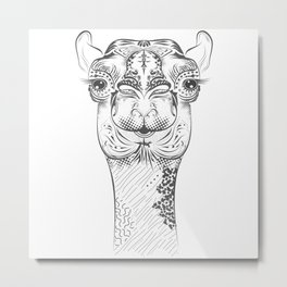 camel head Metal Print