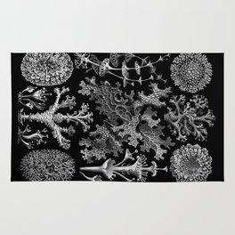 Lichens(Lichenes) by Ernst Haeckel Rug