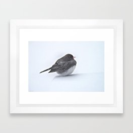 Brave Bird in a Blizzard Framed Art Print