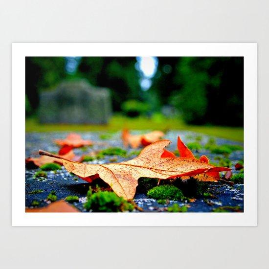 Late Autumn leaf Art Print