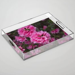 Pretty in Pink Acrylic Tray