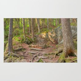 Green Mountain Forest Trail Rug