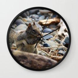 Squirrel Nibble Wall Clock