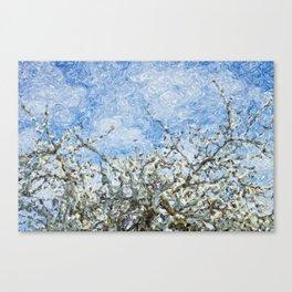 Soft spring white flowers against blue sky Canvas Print