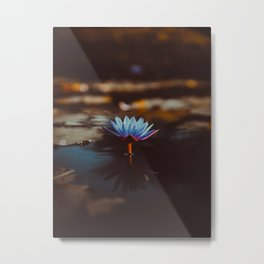 Purple & Blue Lotus Lily Flower Vintage Photography Floral Pond Metal Print