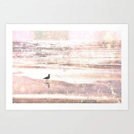 BIRD ON BEACH IN GOLDEN SNOW :) Art Print