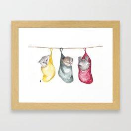 Kittens in socks Framed Art Print