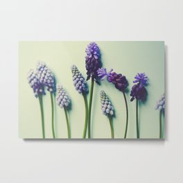 Pretty Blue Flowers Metal Print