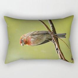 House Finch in the Rain Rectangular Pillow