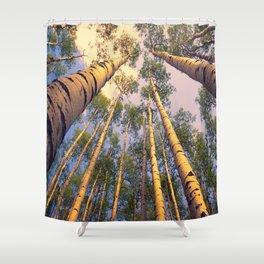 Aspen Trees Against Sky Shower Curtain
