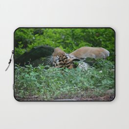 Swat the Fly Laptop Sleeve
