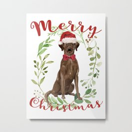 Merry Christmas Chocolate Labrador Metal Print