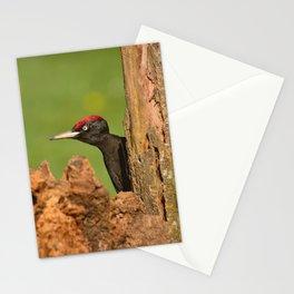 Black woodpecker. Stationery Cards