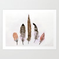 feathers Art Prints featuring Feathers by emegi