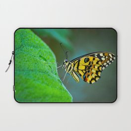Butterfly , cute insect with multicolor colored wings sitting on green leaf on natural background. W Laptop Sleeve