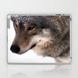 Wolf In the Snow Laptop & iPad Skin