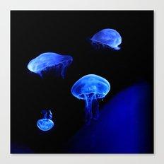 Moon Jelly Canvas Print