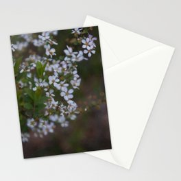 Floral Print 094 Stationery Cards
