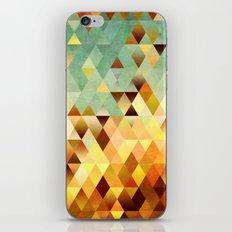 Colorful Life 8 iPhone & iPod Skin