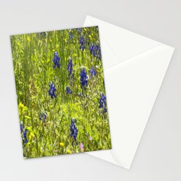 Texas Bluebonnets Stationery Cards