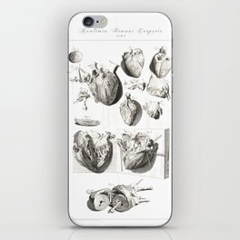 Human Anatomy Art Print HEART ATRIUM VENTRICLE Vintage Anatomy, doctor medical art, Antique Book Pla iPhone Skin