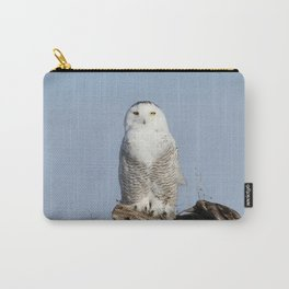 Divinity Carry-All Pouch