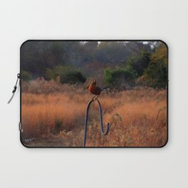 Robin Perched on Bird Feeder Stand Laptop Sleeve