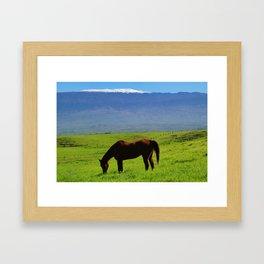 Kamuela Countryside with Mauna Kea Framed Art Print