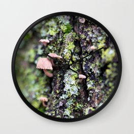Mushroom - Macro Fungi on Tree Bark Wall Clock