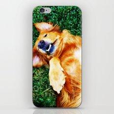 Playful Pup iPhone & iPod Skin