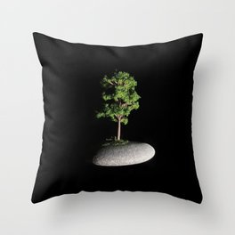 The First Sanctuary Throw Pillow