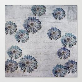 blue daisies par avion Canvas Print