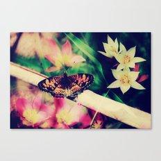 Butterfly :: Summer Beauty Canvas Print
