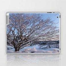 Snow Covered Laptop & iPad Skin