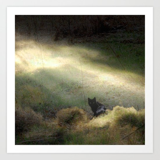 Bewitched Art Print