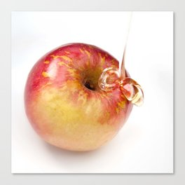 Apple and Honey Canvas Print