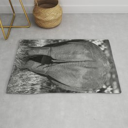 The End Rug