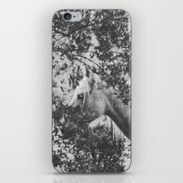 Horse II _ Photography iPhone Skin