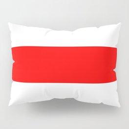 Charlie Flag Pillow Sham