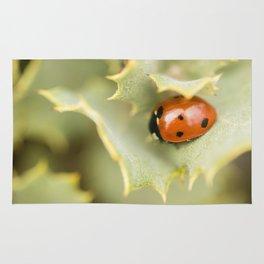 Ladybird #1 Rug