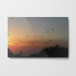 migrating birds Metal Print