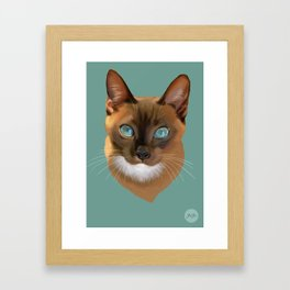 Auburn Cat Framed Art Print