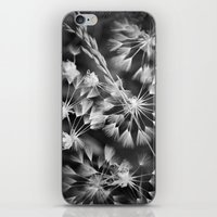 coconut wishes iPhone & iPod Skins featuring Wishes  by A Wandering Soul