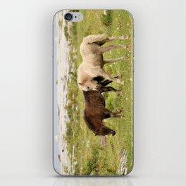 Wild Irish Foals iPhone Skin